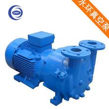 深圳厂家供应2BV系列水环真空泵,防爆电机,高效率,低噪音,长寿命