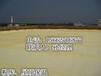 南京市聚氨酯发泡机水库大坝聚氨酯硬泡保温