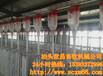 畜牧业猪场安装自动化吃料设备首选河北弘昌