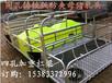 世昌畜牧专业生产母猪产床猪用分娩床