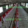 沧州母猪自动化上料系统沧州自动化养猪配套设备生产厂家现代化养猪设备厂家