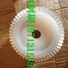 圆盘毛刷尼龙盘刷耐磨丝圆毛刷钢丝抛光盘刷