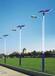 丽江游太阳能路灯厂家汉能牌照明LED灯景观灯品质一流价格实惠