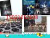 广西雨屋现货租赁十一科技展设备道具租赁仿真恐龙展出租