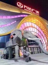 天津一手工厂生产蜂巢迷宫租赁、机械大象行走展览出租