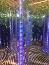 山东镜子迷宫安装搭建出租,工厂生产灯光节造型出租