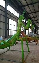 大型仿真昆虫模型出租租赁