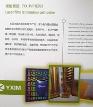 生产销售:镭射膜复合胶,机用/手用水性封口胶图片