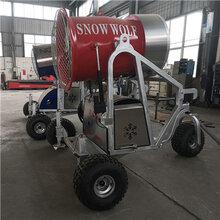 小型人工造雪机价格滑雪场造雪机一天的费用图片