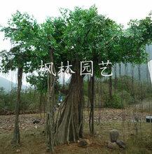 厂家直销仿真植物假树室内外装饰人造树