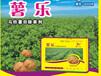 薯乐-马铃薯除草剂-马铃薯除草剂厂家