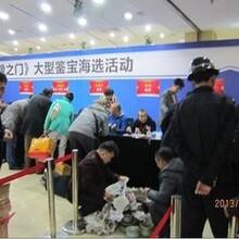河南电视台鉴宝预约电话多少?图片