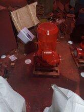 齐齐哈尔xbd消防泵耐磨铸铁立式多级消防泵xbd8.6/15-806厂家直销图片