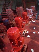 沈阳xbd消防泵耐磨铸铁立式多级消防泵xbd7.2/15-805厂家直销图片