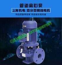 离心泵,SG立式管道泵,立式管道泵,稳压管道泵,管道循环泵,冷却循环泵,不锈钢管道泵,喷淋管道泵图片
