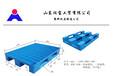 供应各种规格尺寸托盘、塑料托盘、仓储垫板
