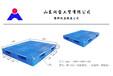 生产各种规格尺寸塑料托盘及仓储垫板