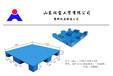 山东润宝塑料托盘厂是专业生产塑料托盘、仓储垫板的大型企业。已通过ISO14001:2004质量体系认证。