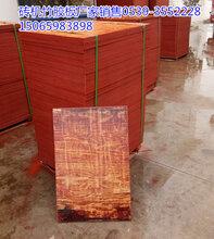 空心砖竹胶板厂家价格图片