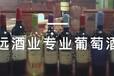 如果您想红酒代理就选深圳鹏远酒业少走弯路成就自己