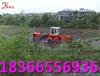 科大液压割草船,专业水草打捞船,水生植物收割船