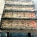 輸送鏈板食品輸送鏈板機物流輸送設備