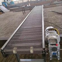 清洗不锈钢网带输送机平板链输送机厂家链板网带运送线图片
