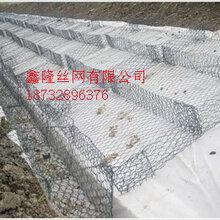 河堤防护格宾石笼网/生态石笼网垫鑫隆厂家直销