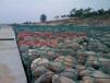 PVC包塑铅丝笼赣州河道防洪加固PVC包塑铅丝笼鑫隆铅丝笼实力厂家