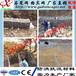云南大理石笼网价格/堤坡加固锌铝和金石笼网/鑫隆石笼网厂家
