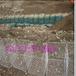 天津东丽湖建设格宾网垫包塑宾格网规格厂家定做三拧绿宾格网