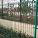 厂家热销市政护栏网涂塑焊接护栏网花园草坪隔离格栅