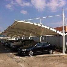 深圳钢结构耐力板车棚阳光板车棚张拉膜停车棚过道雨棚定制