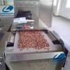 瓜子烘烤设备