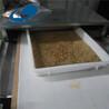 微波杀菌干燥设备