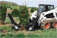 优质移树机款式多移栽机型号齐全/索
