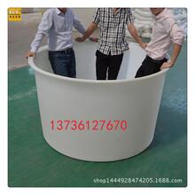 浙江厂家批发聚乙烯食品腌制桶豆瓣发酵桶图片