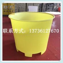 潮州水产养殖桶打浆桶多少钱图片