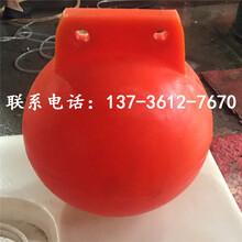 两半浮球塑料浮子生产厂家图片
