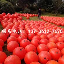 海水专用双耳浮球塑料浮子生产厂家图片