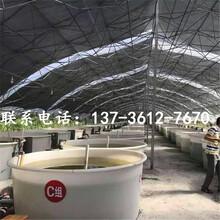 圆型豆芽桶打浆桶生产厂家图片