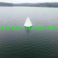 码头塑料制航标太阳能浮标价格图片