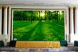 温州乐视电子供应温州地区LED显示屏维修保养、可包年维修