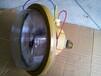 1107-YQL40免维护节能防爆吸顶灯