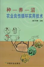 景色年华农业图书种--养--沼农业良性循环实用技术图片