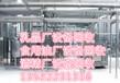 內蒙古大型化學試劑廠設備回收二手反應釜回收北京拆除化工設備