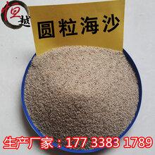 石家庄沙疗沙供应商沙灸沙浴沙多少钱一吨