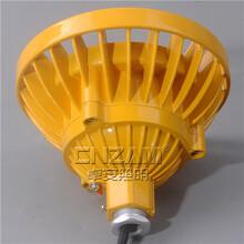 武汉直销LED免维护防爆灯ZBD101圆形40W