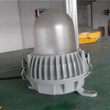 全国供应厂家直销海洋王(NFC9183)防炫泛光灯