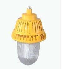 湖北直销LED免维护防爆平台灯ZBD130